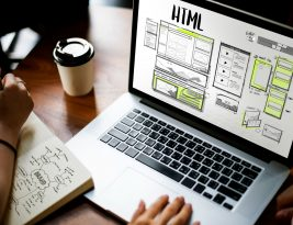 What Is A Web Expert? How To Recognize One